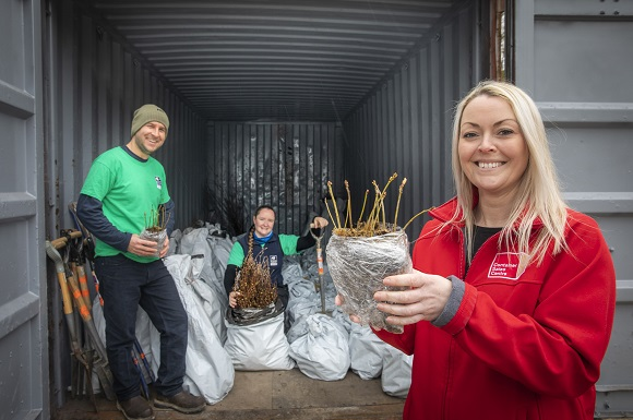 Forest of Rare Trees Kept in the Dark for Major North Wales Planting Project