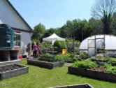 Wales 'Grows for it' with £130,000 Investment in More Allotments
