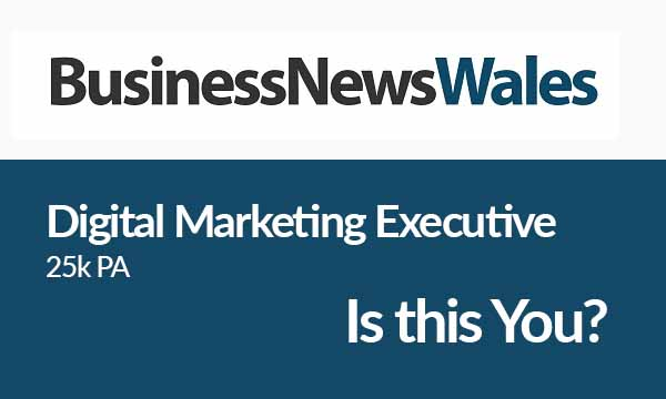 Business News Wales is Looking for a Digital Marketing Executive – Is this You?