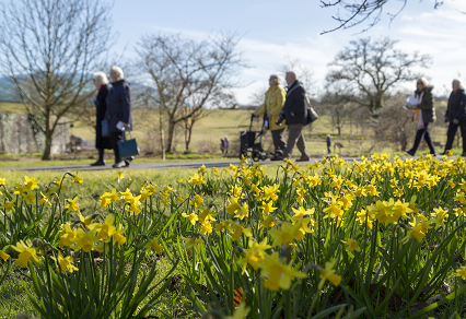 Garden of Wales Visits Hit a 17-Year High