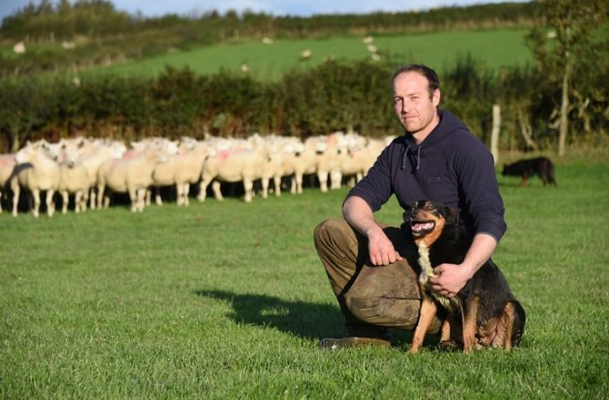 Farmers Join Scheme to Boost Their Animals' Health