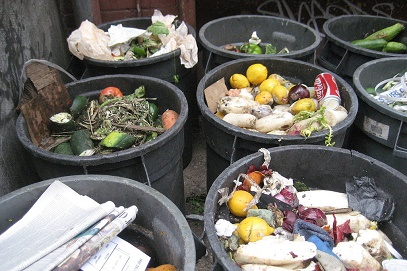 Cardiff Council Signs Up to UK-Wide Commitment to Tackle Food Waste