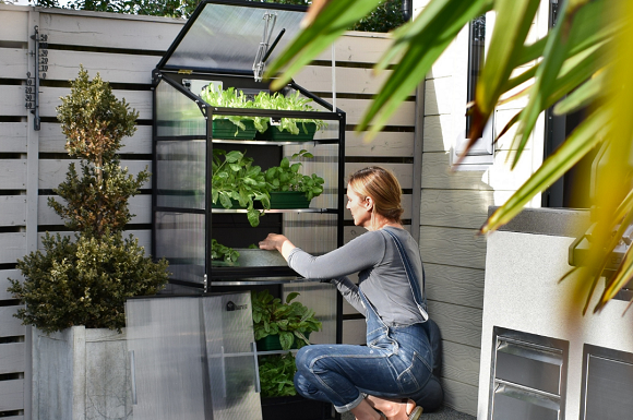 Welsh Green-Tech Firm Launches Climate Controlled Mini Greenhouses