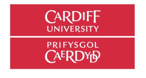 Cardiff University Students Connect with Senegal