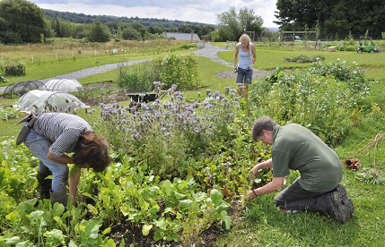 Growing the Future at the National Botanic Garden of Wales